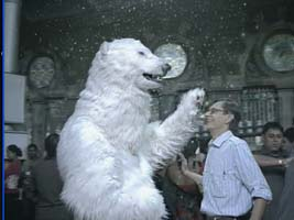 Polar Bear Performer