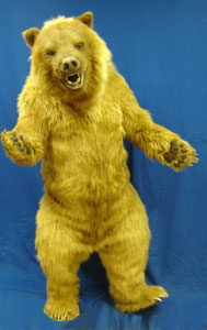 Grizzly Bear Suit