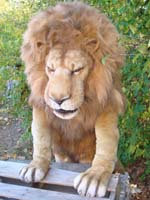 animatronic lion costume