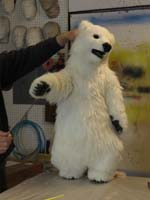 performing polar bear cub